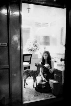 Audrey feeding her pet deer.jpeg